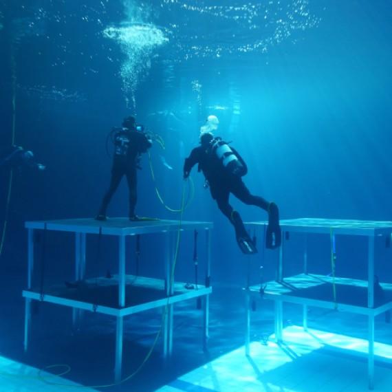 aquafilm november underwater cinematograpy filmmaking